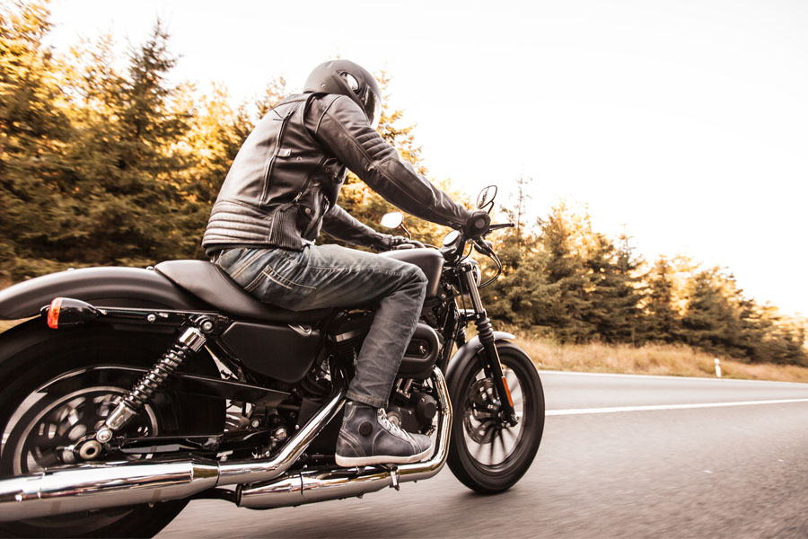 Motorcycle Insurance - Guy Riding Motorcycle Down Pine Lined Road